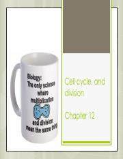 Lecture 10 - Cell cycle, division, death