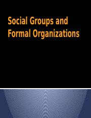 6_Social Groups and Formal Organizations.pptx