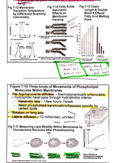 hydropathy notes-2