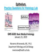 2019 Practice Questions with answers Histology Epithelium