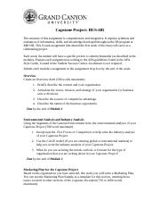 bus485-capstone-project-overview-student