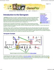 The Genogram - GenoPro