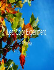 Copy of AP Bio Leaf Color Experiment .pptx