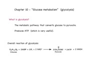 ch369_sum10_glycol_1_notes