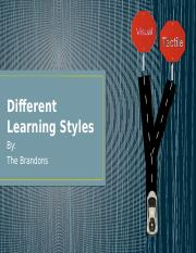 Different Learning Styles.pptx
