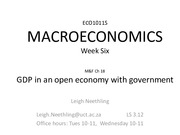 GDP in an open economy with government