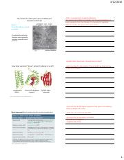 Intercellular Compartments and Protein Transport- handouts.pdf