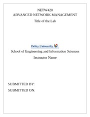 NETW420_Lab_Report_Template.docx