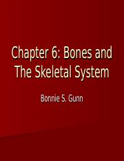 Chapter 6 Bones and The Skeletal System Student Notes.ppt