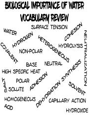 Biochemistry Review Games - Biological Importance of Water and pH Vocabulary Slap Game.pdf