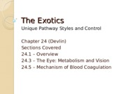 Lecture 20 - The Exotics