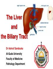 20- The Liver-Lecture 1