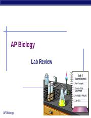 fogliaLabReview.ppt
