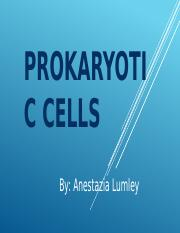 Prokaryotic Cells.pptx