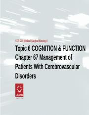 Topic 6 COGNITION & FUNCTION Ch 67 Stroke Pathophysiology.ppt