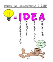 drugs for bradycardia and low blood pressure