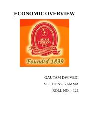 gautam ECONOMIC OVERVIEW.docx
