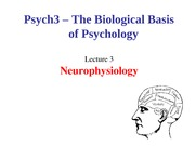Lecture 3-Neurophysiology