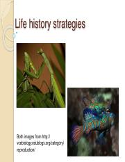 life+history+student-2-2