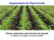 UC Davis SAS 12 Spring 2015 L09 Requirements for Plant Growth
