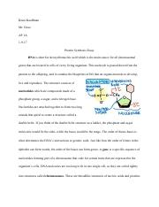 Protein Synthesis Essay.pdf
