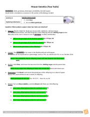 Ashleigh Snyder Mouse Genetics (Two Traits).docx - Mouse ...