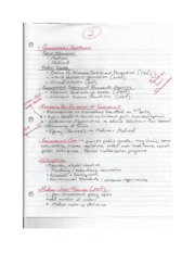 HSMG 3240 Notes 6
