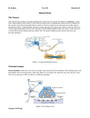 Handout 3 (Biology of Mind and Consciousness)