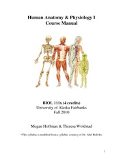 BIOL 111X+Human Anatomy and Physiology I+Hoffman Woldstad+201003