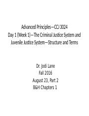 August 23 - Part 2 -The CJ System Structure  (Slide Shells)_JJ.pptx