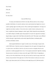 Cause and Effect Essay Final Draft.docx