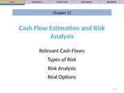 Ch 12 Lecture Slides, Cash Flow & Risk Analysis