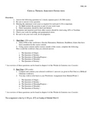 Critical_Thinking_Assignment_Instructions
