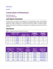 Lab Report  -Conservation of Momentum.doc