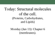 Biol131 Proteins, Carbohydrates, and Lipids