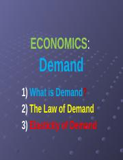 ECO Chapter 4 Demand_new - Remy - Students.pptm
