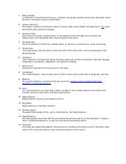 PSYC 340 biological psychology brain structure functions worksheet