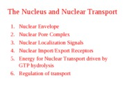 The_nucleus_and_nuclear_transport