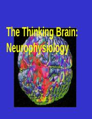 Brain Physiology & Applied Physiology