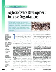 agile-in-large-org