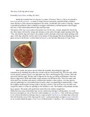 The story of the fig and its wasp.docx