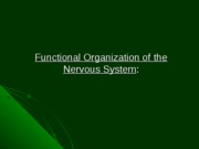 Introduction Nervous system