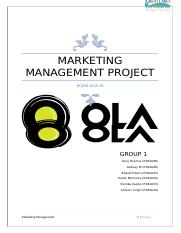 Ola Project Report Group D9 docx - Goa Institute of