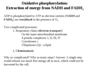 Chapter_9b_Oxidative_phosphorylation