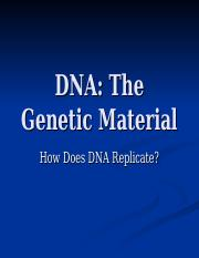 2 DNA Replication.ppt