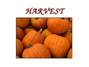 Lecture 7_HARVEST