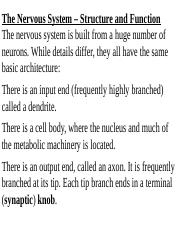 01The-Nervous-System-Part-I