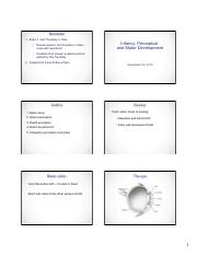 8 - Perceptual and Motor Development.pdf