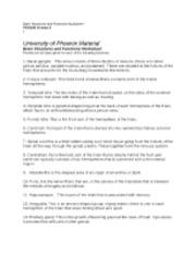 psy 340 brain structures and functions Psy 340 week 2 individual assignment brain structures and functions worksheet product categories  complete the brain structure and functions worksheet, located on.