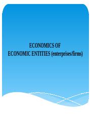 ECONOMICS OF ENTITIES (ENTERPRISES).pptx